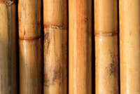 featured image thumbnail for blog Top Modern Uses of Bamboo